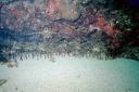 2002 guadeloupe 018