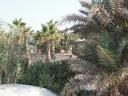 2003 tunisie 054