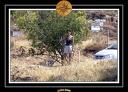 2006 Crete 076