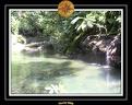 2006 Guadeloupe 021