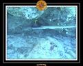 2006 Guadeloupe 057