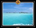 2007 Maldives 056