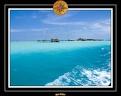 2007 Maldives 057