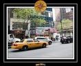 NYC 011
