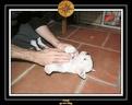 20 Nov 2005 Yoda 006