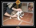 20 Nov 2005 Yoda 007