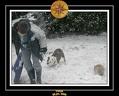 Yoda 2006 Decouverte de la neige 014