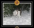 Yoda 2006 Decouverte de la neige 027